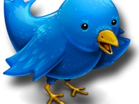 manage your Twitter account by Tweeting 100 times daily for $100.00 a Month