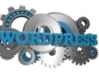 will Create A Professional WordPress Site For Your Small Business for