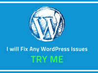 fix Any WordPress Issues and Problems