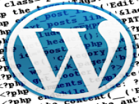 be your wordpress expert for half a day!