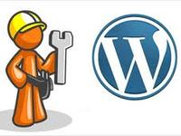 setup & configure wordpress for you