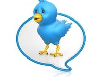 provide daily Tweets to promote your business.