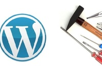 fix any issue in your wordpress theme or plugin