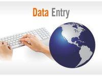 do virtual assistant tasks - Data Entry