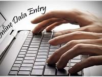 Do Data Entry
