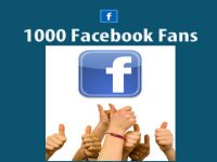 provide 1000 USA based REAL Facebook Fans for your Fan Page