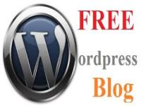 teach you how to setup a free WordPress blog