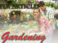 give you 395 High Quality PLR Articles on Gardening