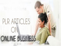 give you 950 High Quality PLR Articles on Online Business