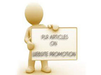 give you 395 High Quality PLR Articles on Web Site Promotion
