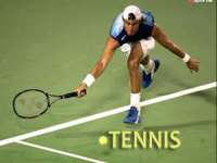give you 950 High Quality PLR Articles on Tennis