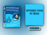 Send you a ready made website- PC Registry Site