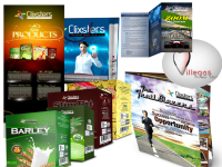 make you effective Business/Marketing Materials  and  Website designswebi