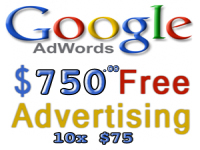 provide $750 USD worth of Adwords Vouchers 10x $75 Coupons Valid for 1 Whole Year