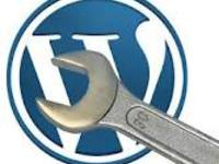 install Wordpress and your theme, necessary plugins plus backlinks bonus