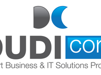 provide Business & IT Solutions