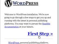 Host Your Domain and Install Wordpress Including Free Theme