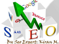 do Professional Search Engine Optimization (Onpage and Offpage Both) Of Your Website