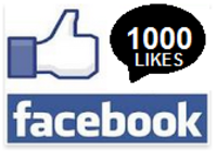 provide you with 1000 USA or International Facebook Fan Page Likes within 48 Hours.