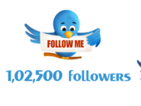 provide 1,02,500+ twitter followers