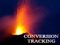 install conversion tracking code on your website