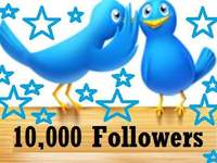 add 10,000 REAL followers to your Twitter account! No Eggs, NO BOTS!!