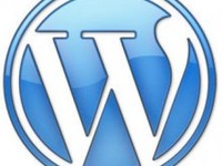 install wordpress on your hosting account.
