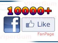 give you 10000 Facebook like within 24 hours.