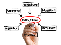 send you a beginners guide to Online Marketing